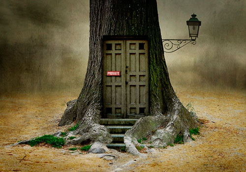 Only OPENS, if you are open for fantasy. by Ben Goossens
